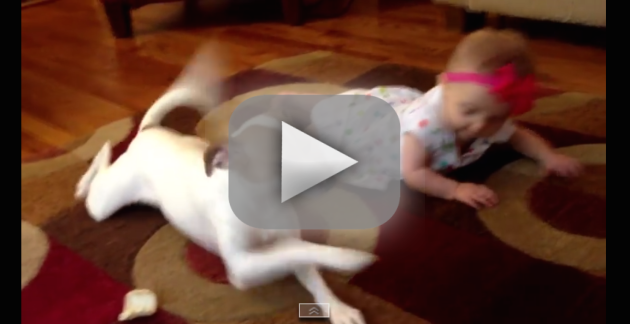 Dog Teaches Baby to Crawl