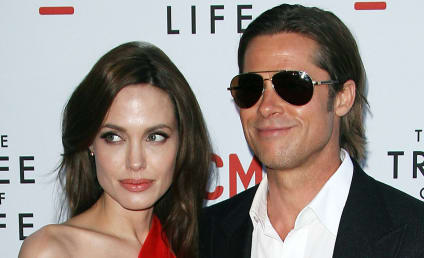 Report: Brad Pitt and Angelina Jolie are Nice