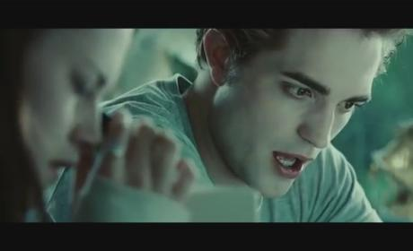 Presenting: The Twilight Saga, Bad Lip Reading Edition!