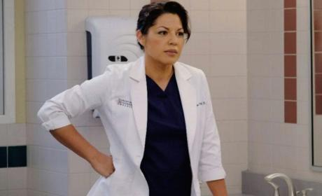 Sara Ramirez as Callie