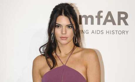 Kendall Jenner and Lewis Hamilton: New Couple Alert?!?