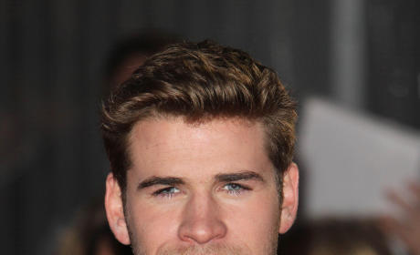 Liam vs. Chris Hemsworth: Who Would You Rather...