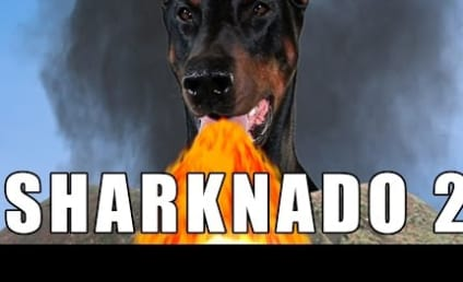 Sharknado 2 Parodies: Prepare for a Purr-icane!
