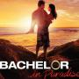 The Bachelor in Paradise Photo