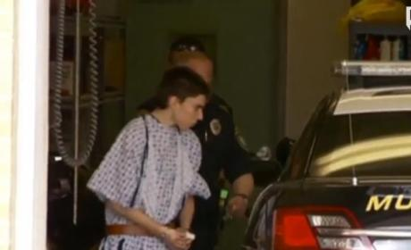 Alex Hribal, School Stabbing Suspect, Charged