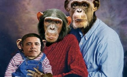 Obama Chimp Email, Photo Spark Outcry, Calls For California Republican's Resignation
