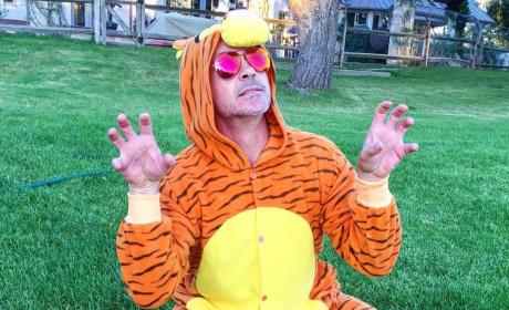 Robert Downey, Jr. as Tigger
