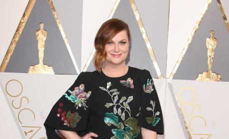 Amy Poehler at the 2016 Oscars