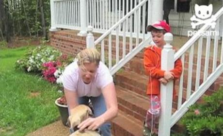 VIDEO: Dog Plays Dentist, Pulls Out Child's Loose Tooth