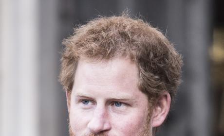 Prince Harry: Headed to Yale?