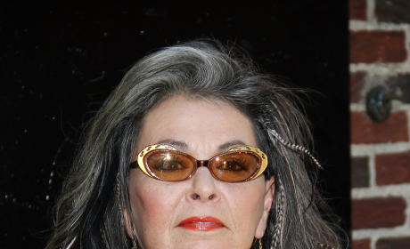 "Roseanne Barr Calls Out Obama, Beyonce, ""Drooling Mutant"" Fans of Singer"