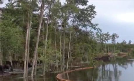 Louisiana Sinkhole Video