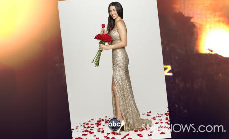 Andi Dorfman as Bachelorette: Good Choice?