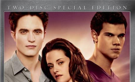 Conclusion to Breaking Dawn: Revealed?!?