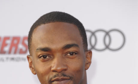 Anthony Mackie: Drunk on Donald Trump Kool-Aid!