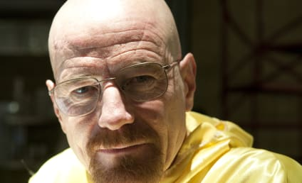 Bryan Cranston on Lex Luthor Rumors: Huh?!?
