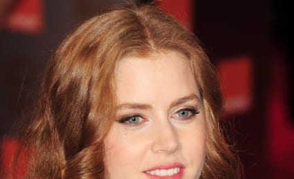 Amy Adams Today Show Appearance Canceled: Why?