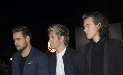 One Direction Documentary Director: Unsurprised by Zayn Malik Departure