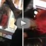 Girl Yanked Out of Drive-Thru Window By Hair: INSANE Video