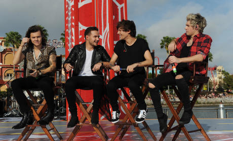 One Direction Break-Up Rumors: Debunked!
