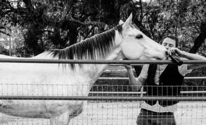 Channing Tatum Adopts Horse, Feeds Him Beer