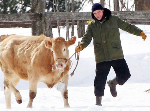 Robert Pattinson and a Cow