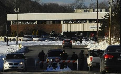 Newtown Didn't Happen, Professor Claims