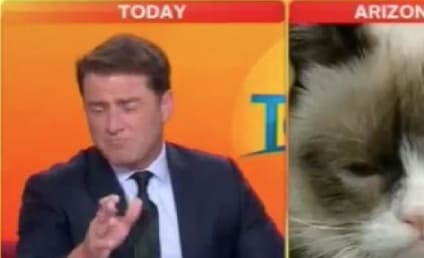 Grumpy Cat Interviewed on Australian TV, Anchor Can't Even Deal