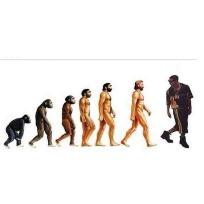 Drake Meme Evolution