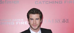 Liam Hemsworth at Los Angeles Premiere