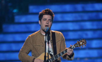 The American Idol Power Poll: Volume VIII