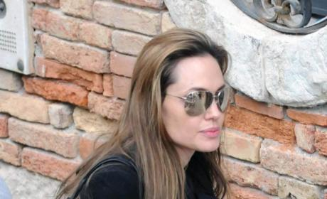Angelina Jolie Opens Up About the Brangelina Brood