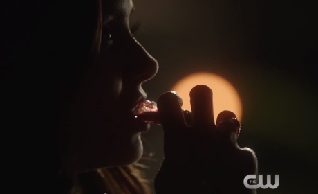The Vampire Diaries Season 6 Episode 20 Promo: Don't Do It, Damon!