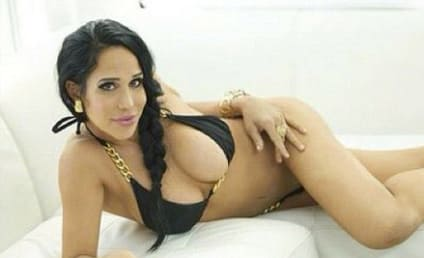 Nadya Suleman Pleads No Contest to Welfare Fraud; Octomom Avoids Jail in Plea Deal