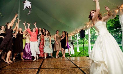 Brides Throwing Cats: Best of the Memes