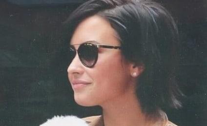 Demi Lovato's Dog: Killed in Coyote Attack, Sources Say