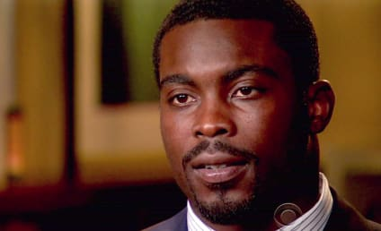 Michael Vick Loves Animals, Seeks Pet Dog
