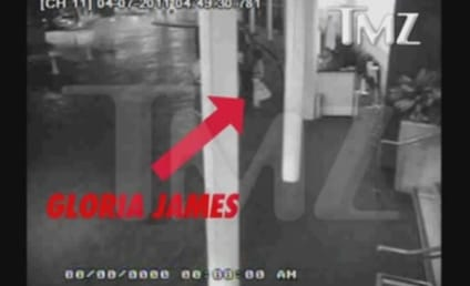 When LeBron's Mom Attacks: Gloria James Valet Slap Caught on Tape!
