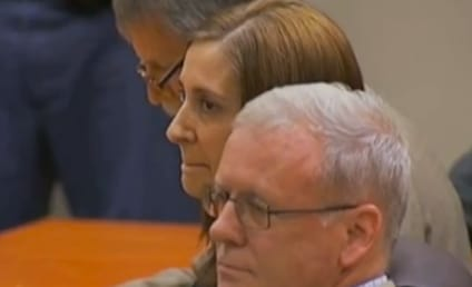 Andrea Sneiderman Sentenced to Five Years in Prison For Perjury, Making False Statements