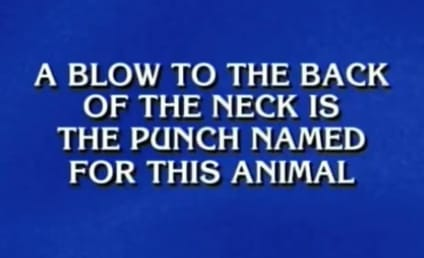 "Guy Answers ""Donkey Punch"" on Jeopardy"