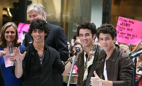 "Joe and Nick Jonas Plan ""Crazy, Good, Clean, Fun"" Bachelor Party"