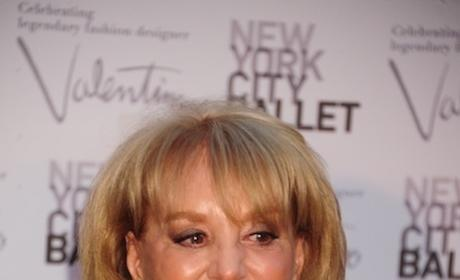 Barbara Walters Retirement: Coming in 2014?