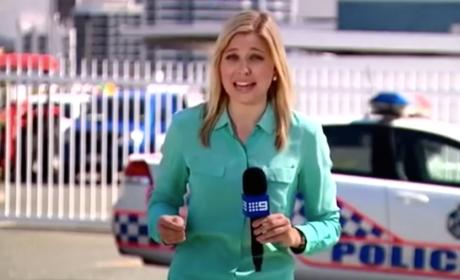 Reporter Gets Bitten by Ant on Air, Is in Great Deal of Pain
