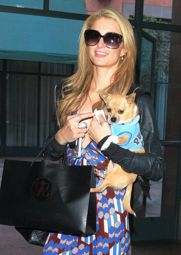 Paris Hilton and Her Dog