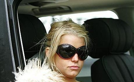 Jessica Simpson to Mourn Dog on Entourage