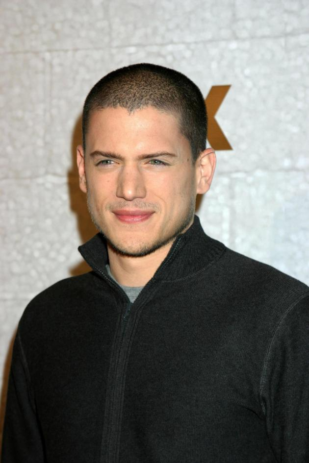 Wentworth Miller Picture - The Hollywood Gossip