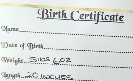 Courtney Stodden Reborn Baby Birth Certificate