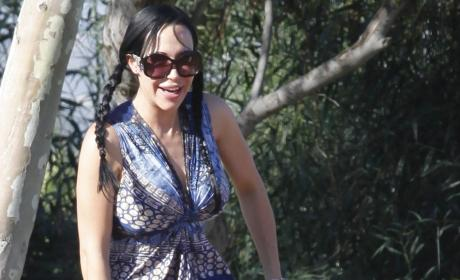 Nadya Suleman Offered Gig as Porn Assistant