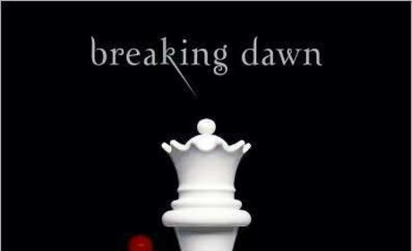 Jordan Scott Accuses Stephenie Meyer of Plagiarizing Breaking Dawn