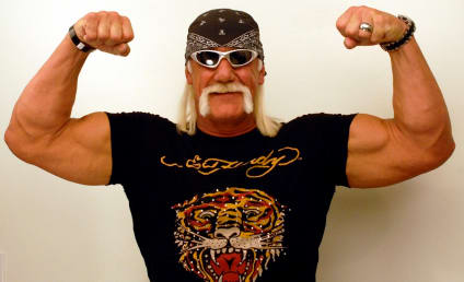 Hulk Hogan Refiles Lawsuit Against Gawker